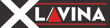 Lavina Szerviz Kft - Kenőanyag importőr
